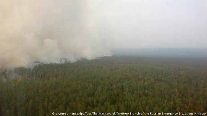 Russland Sibirien Wetter | Waldbrände Krasnojarsk