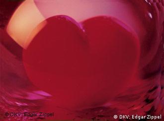 http://www.dw-world.de/image/0,,498358_4,00.jpg