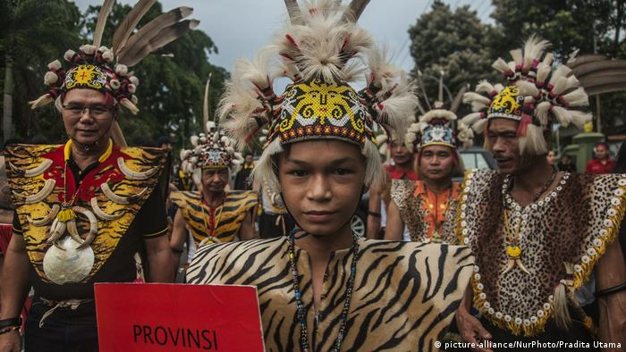 Carnival of Dayak Culture Week (picture-alliance/NurPhoto/Pradita Utama)
