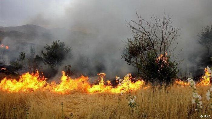 Iran | Waldbrand (IRNA)