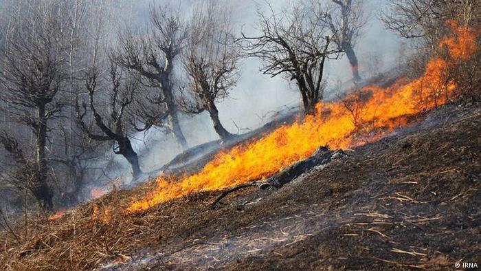 در برخی مناطق از جمله منطقه سردشت آتش به ظاهر مهار شده روز جمعه، ۱۱ مرداد دوباره شعلهور شد
