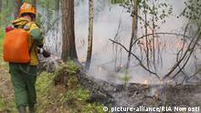 Russland Krasnojarsk Waldbrände in Ostrussland