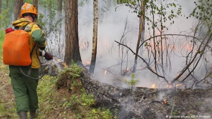 Russland Krasnojarsk Waldbrände in Ostrussland (picture-alliance/RIA Nowosti)