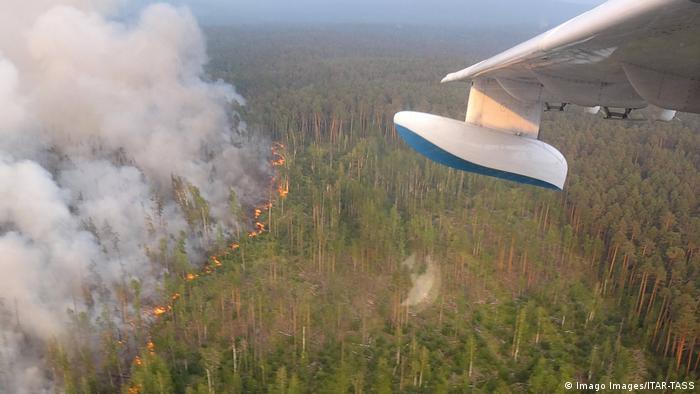 Пожежі в Сибіру гасять за допомогою авіації