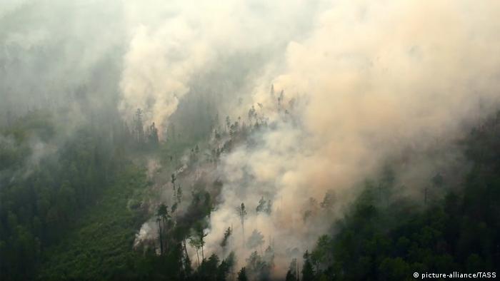 Russland Waldbrände in der Region Krasnojarsk (picture-alliance/TASS)
