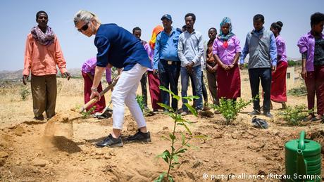 Äthiopien - Weltrekord im Bäume pflanzen -Symbolbild (picture-alliance /Ritzau Scanpix)