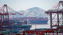 China, Shanghai - Yangshan Deep Water Port
