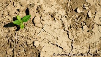 Весняне маловоддя спричинить гідрологічну посуху влітку
