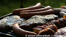 Fleisch Symbolbild