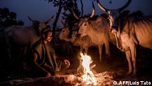 Fulani herdsman Yusuf Ibrahim sets a bonfire to keep his cattle warm before nightfall at Kachia Grazing Reserve, Kaduna State, Nigeria, on April 16, 2019. - Kachia Grazing Reserve is an area set aside for the use of Fulani pastoralist and it is intended to be the foci of livestock development. The purpose for the grazing reserves is the settlement of nomadic pastoralists and inducement to sedentarisation through the provision of land for grazing and permanent water as way to avoid conflict. (Photo by Luis TATO / AFP) Reportage-Text: https://bit.ly/30b2nnc