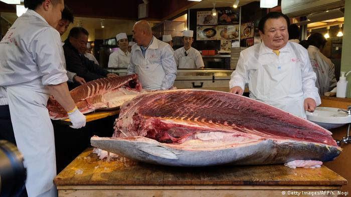 Global Ideas Tsukiji Fischmarkt in Tokio