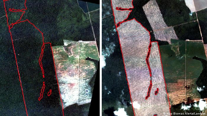 Imagem de satélite mostra área desmatada no Mato Grosso