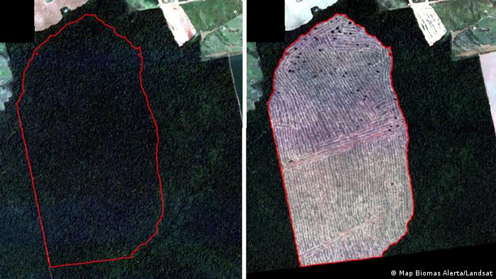Brasilien | Satellitenbild Regenwaldabholzung in Mato Grosso