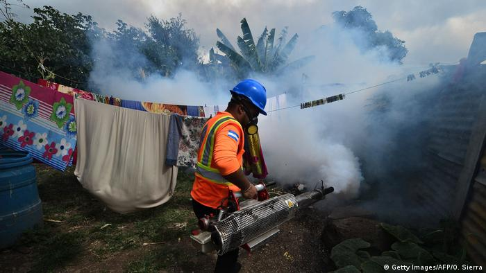Dengue-Fieber in Honduras (Getty Images/AFP/O. Sierra)