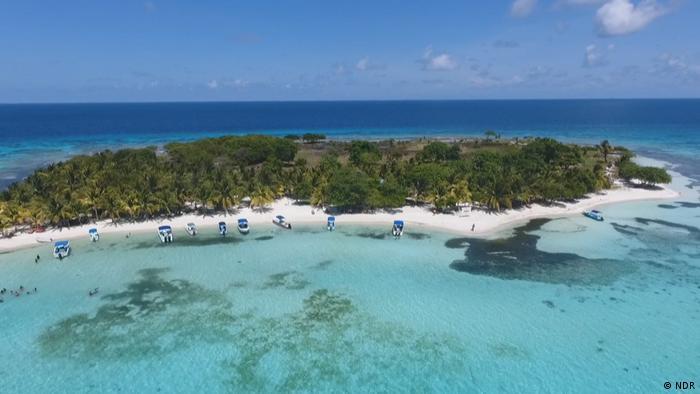DW Global 3000 - Belize Riff Korallen-Riff (NDR)
