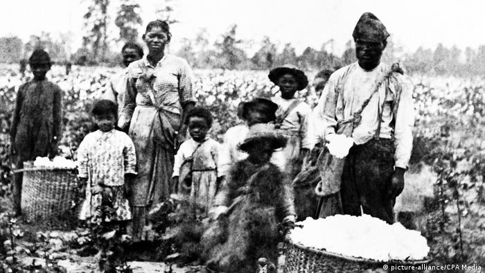 A picture of a group of African slaves, including men, wonen and children, picking cotton at a plantation in the United States