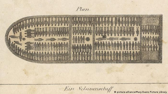A historical picture showing how the slaves were stacked to allow for the Middle Passage.