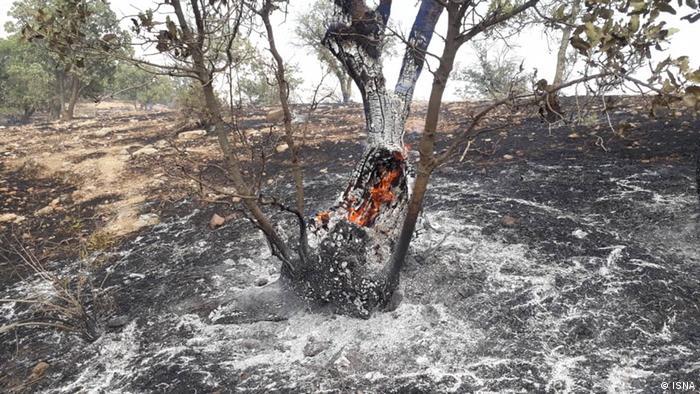 Iran   Waldbrand in Dena