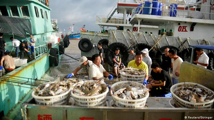 Workers unload seafood from Chinese fishing boats