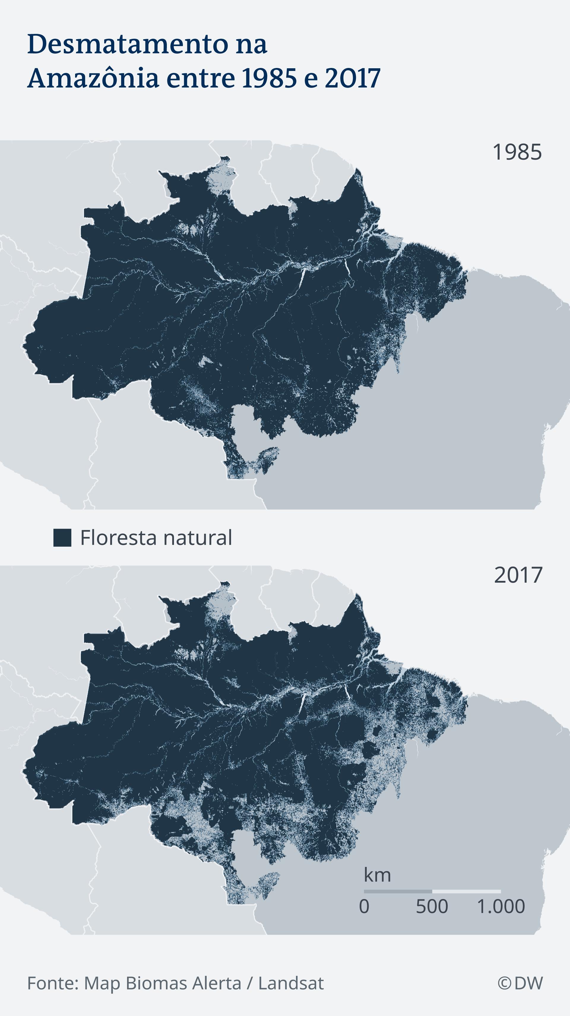 Gráficos comparam cobertura florestal na Amazônia entre 1985 e 2017