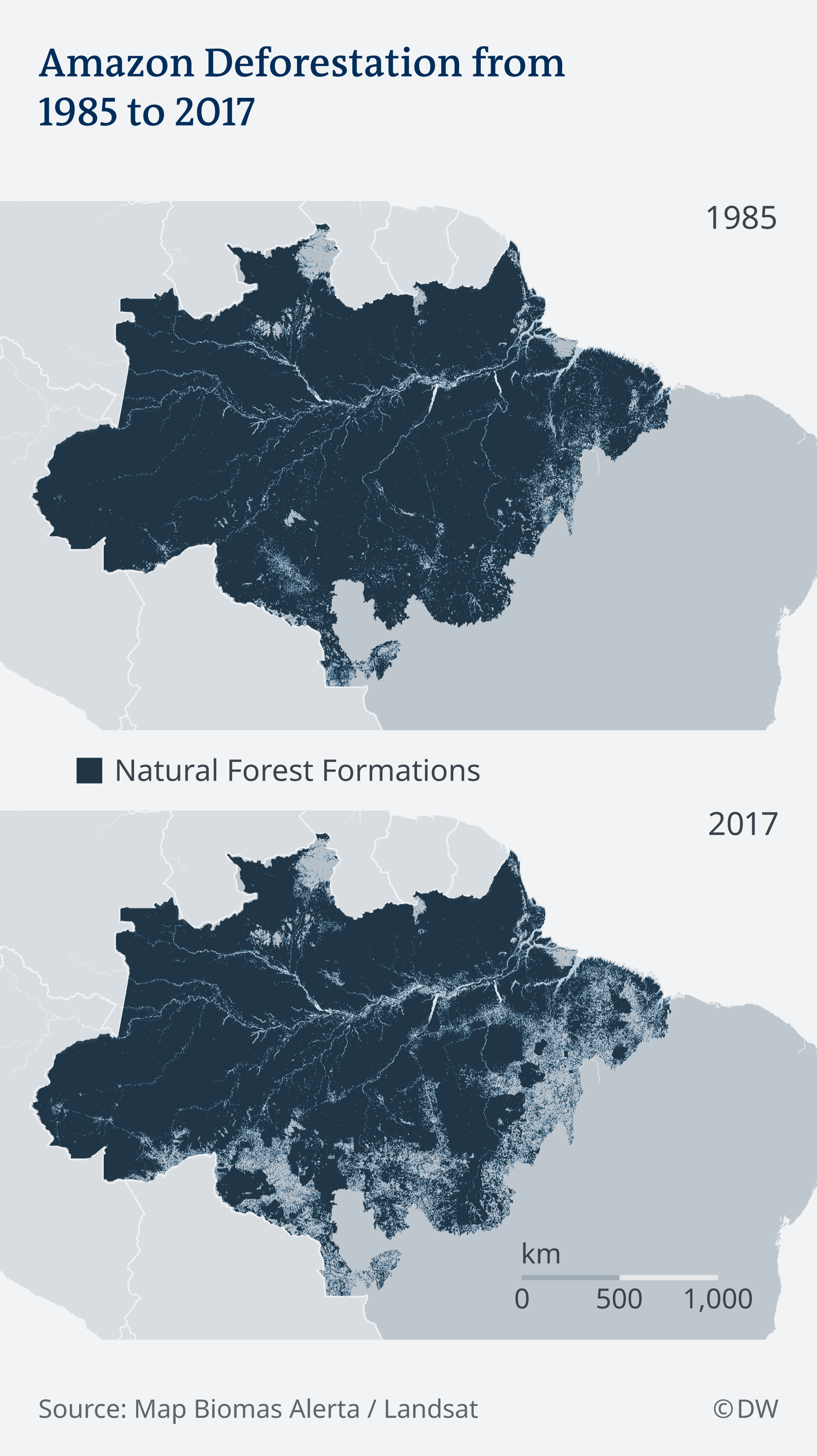 Deforestation in Amazon from 1985 to 2017