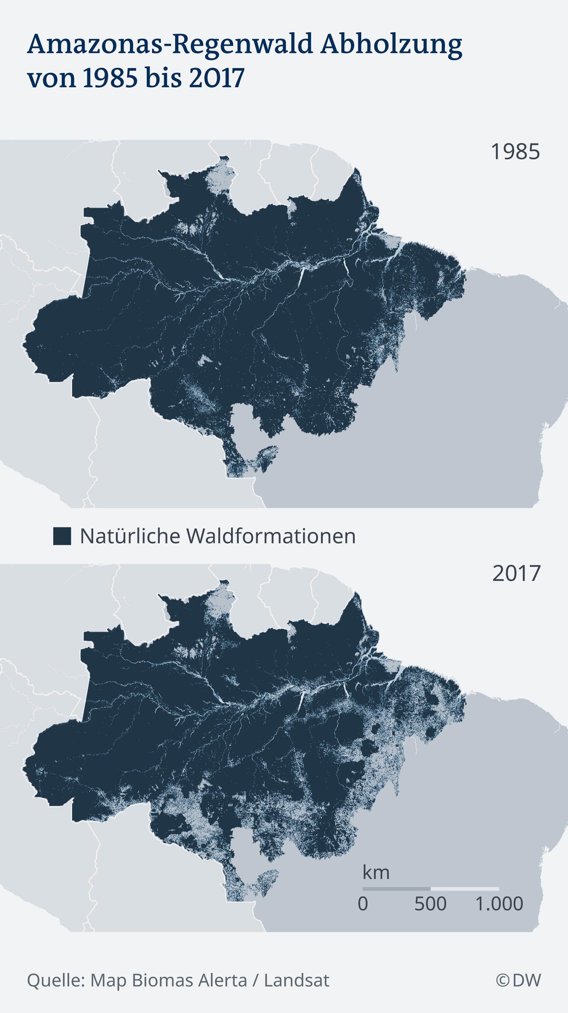 1985 vs 2017: Der Waldbestand im Amazonas im Vergleich