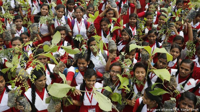 A large group of children hold up the saplings to the camera