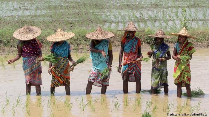 Indien Monsun & Überschwemmungen in Nayagarh (picture-alliance/NurPhoto)