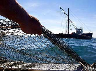 Fischer mit Netz. Quelle: AP