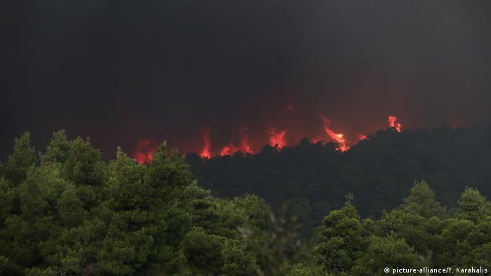 Flames rise from a forest fire near Psachna village on the island of Evia, northeast of Athens