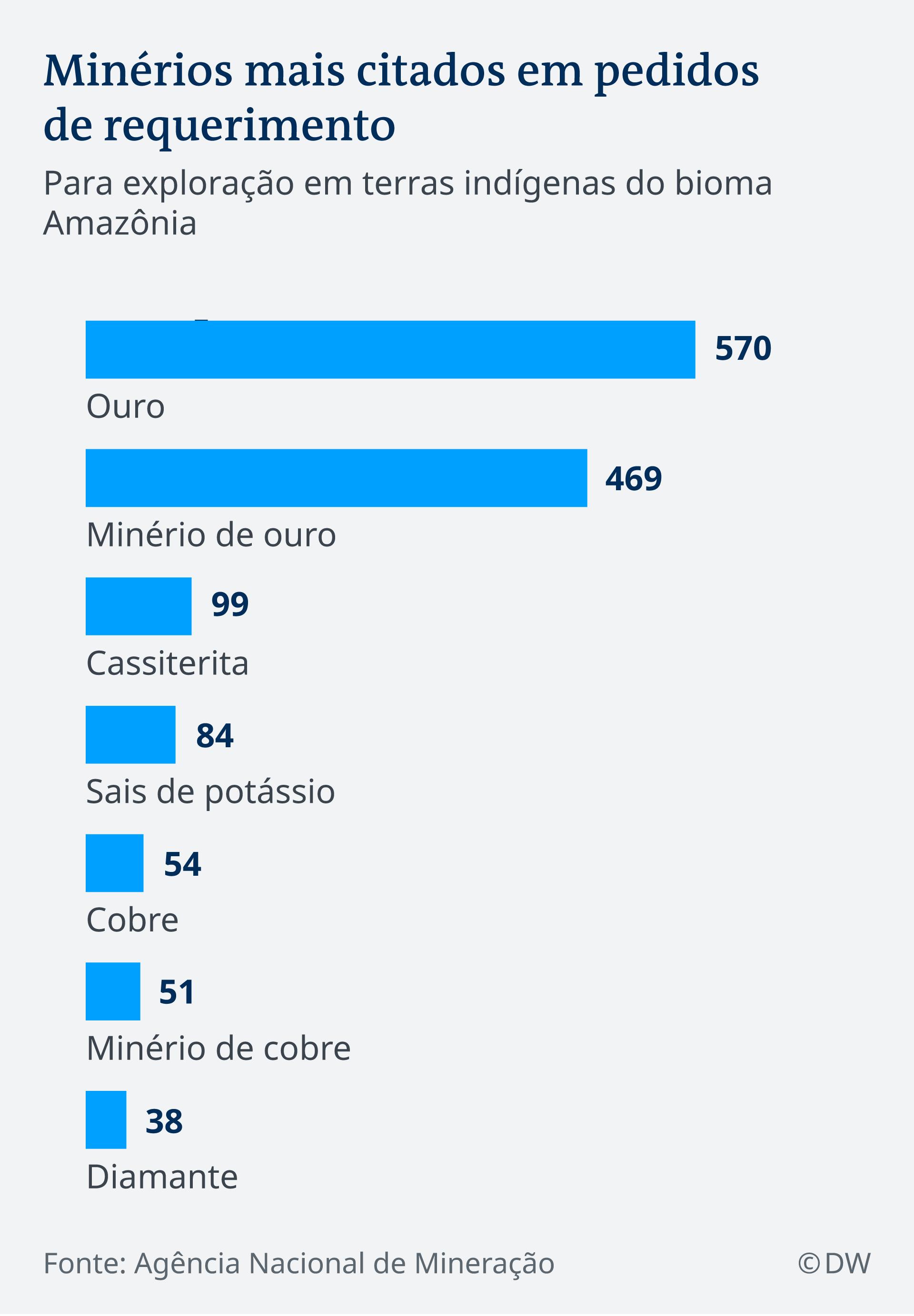 Infografik Art der häufigsten Bodenschätze im Amazonasgebiet Brasiliens PT