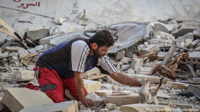 Mohammed Alaa acaricia a un gato entre los escombros