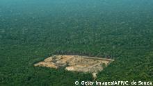 Amazonas Abholzung des Regenwaldes