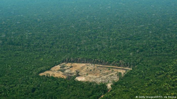 Aumento de 66% no desmatamento da Amazônia Legal em julho de 2019 corresponde a 1.287 km²