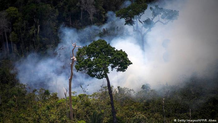 An aerial view of smoke rising from the trees due to a forest fire in the Amazon