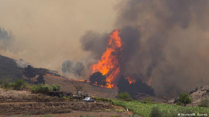 Spanien Waldbrände auf Gran Canaria (Reuters/B. Suarez)