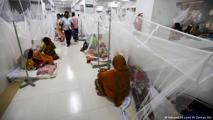 Dengue-Ausrottungskampagne in BD