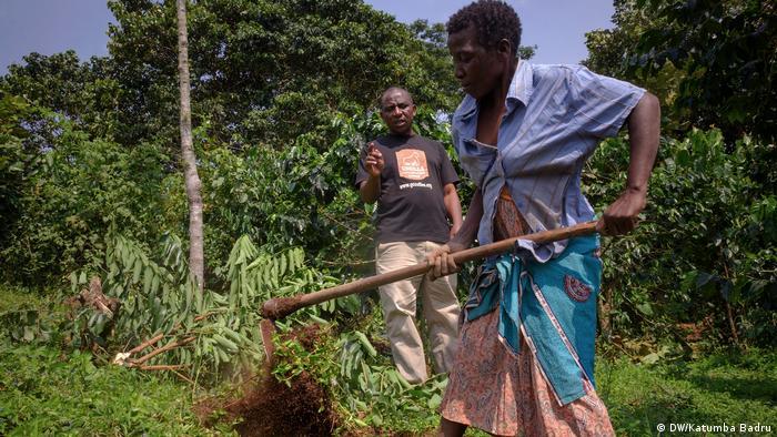 Farmers working on a coffee farm in Uganda