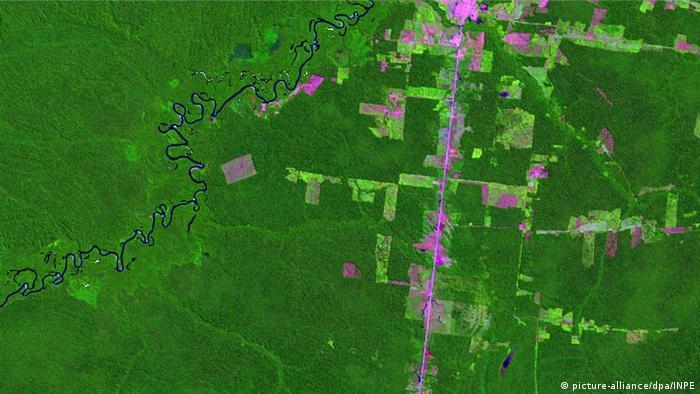 Foto de satélite mostra áreas desmatadas na Amazônia