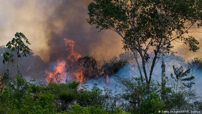 Forest fire in Tapajos National forest (Getty Images/AFP/A. Scorza)
