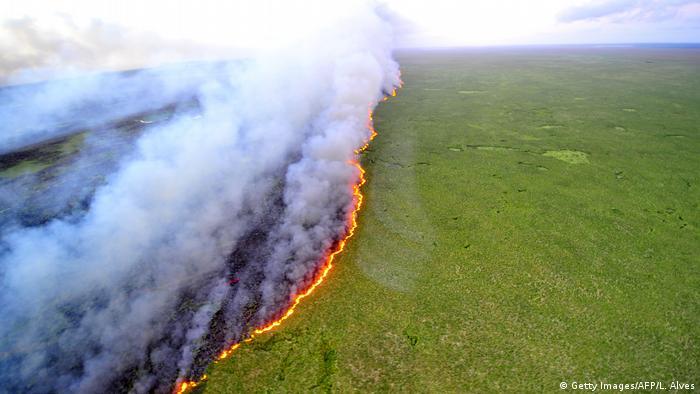 Brasilien Waldbrände (Getty Images/AFP/L. Alves)