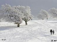 Шварцвальд  зимой