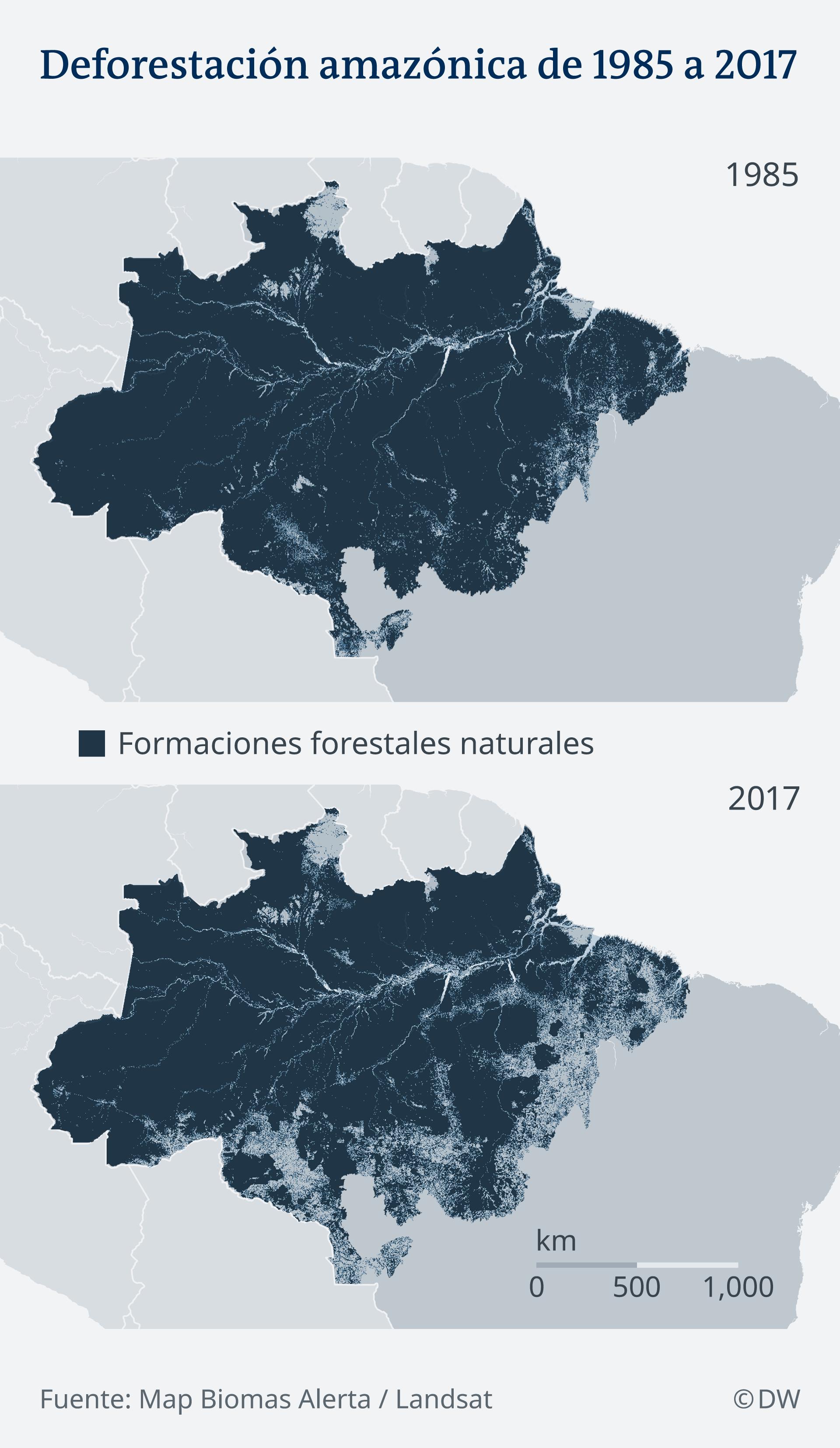 Infografik Waldbestand Amazonas 1985 vs 2017 ES