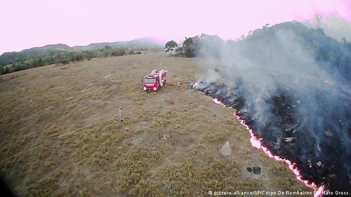 Brasilien Brände im Amazonasgebiet (picture-alliance/AP/Corpo De Bombeiros De Mato Gross)