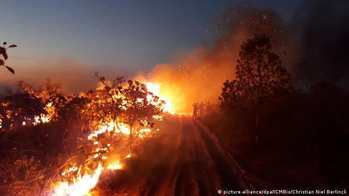 A wild fire burns in Brazil's Amazon region (picture-alliance/dpa/ICMBio/Christian Niel Berlin)