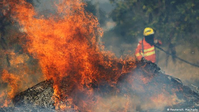 Brasilien Waldbrände (Reuters/A. Machado)