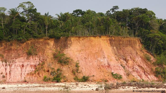 The profile of the soil in the Amazon rainforest