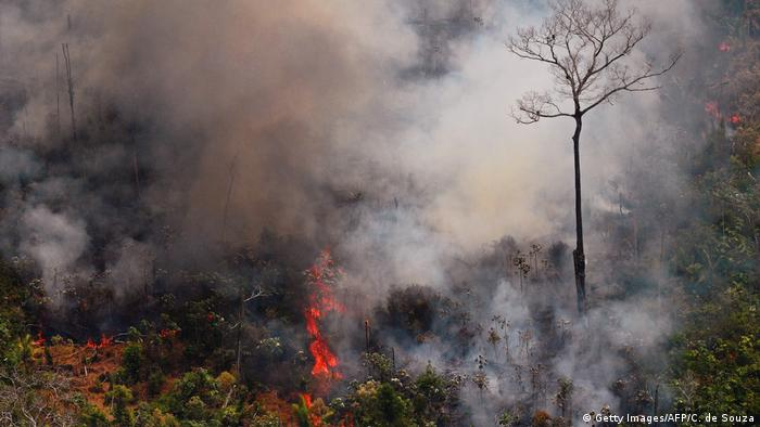 An aerial picture showing fire and smoke in the Amazon rainforest