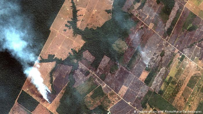 A satellite image shows smoke rising from a wildfire in the Amazon river basin (picture-alliance/AP Photo/Maxar Technologies)