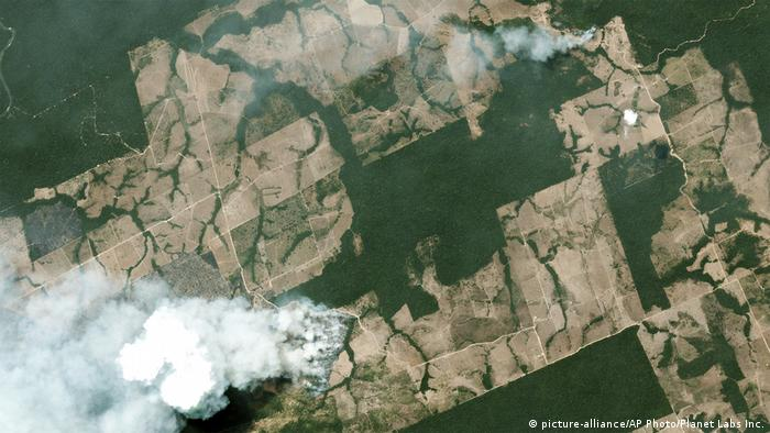 A satellite image shows smoke billowing from forest fires in Brazil (picture-alliance/AP Photo/Planet Labs Inc.)